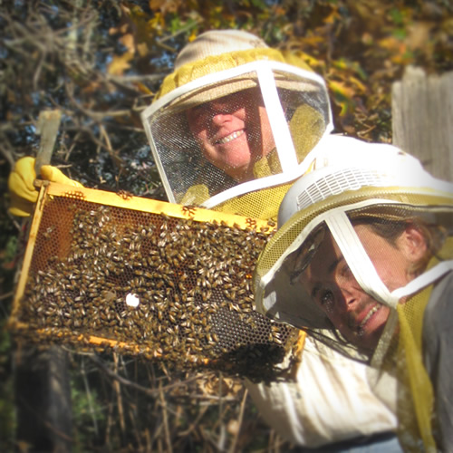 Katrina and Daniel Frey in bee suits, holding up a honeycomb swarming with bees.