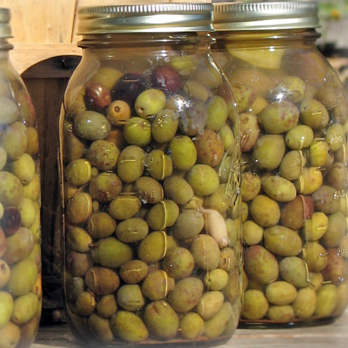 Jars stuffed with organic olives, homemade.