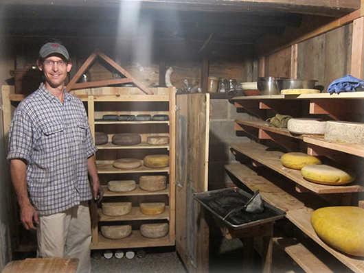 In the cheese cellar