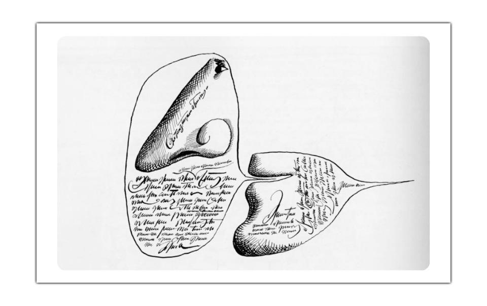 Drawing of the nose and the mouth.