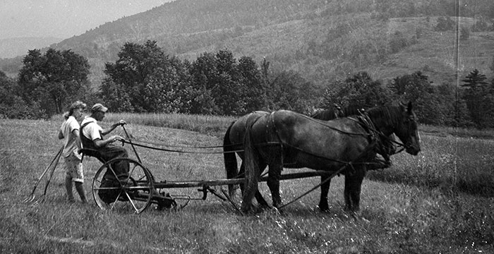 Vintage photo of couple plowing land